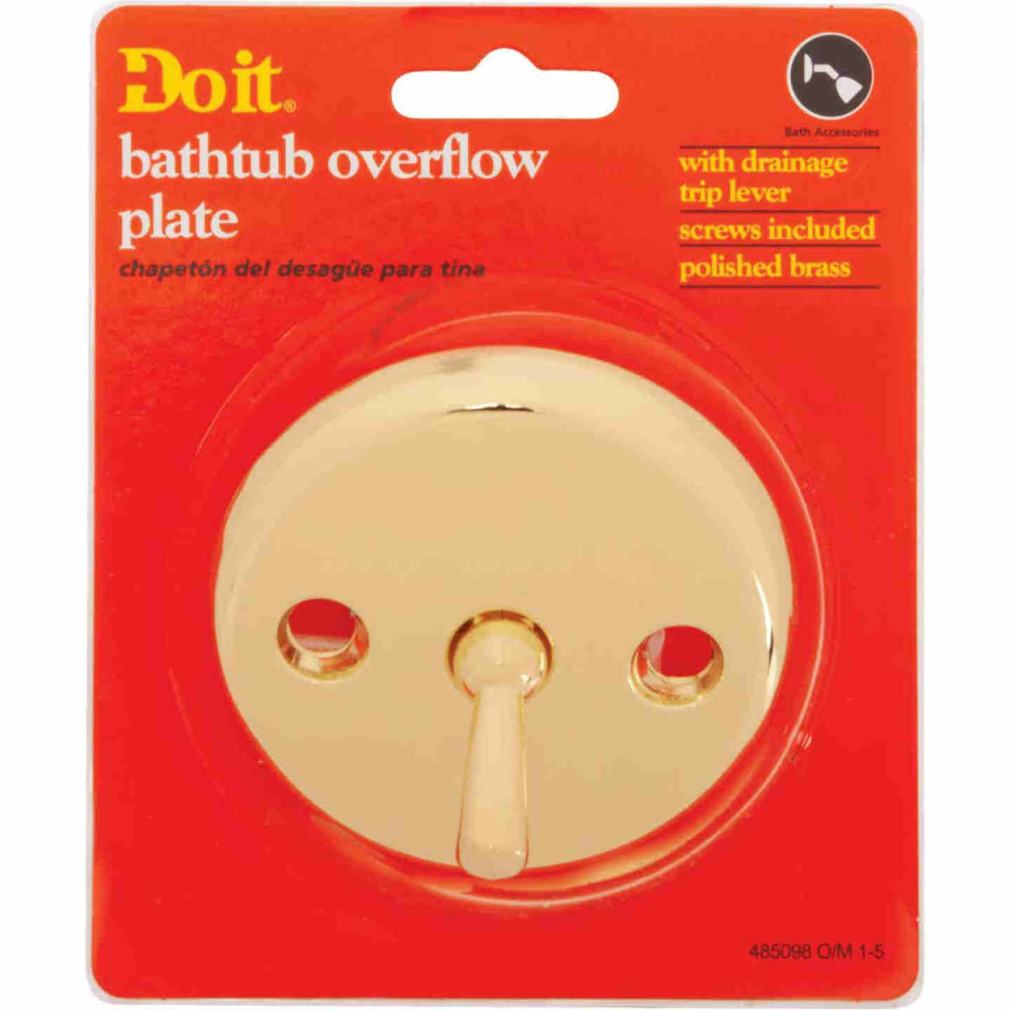 Do it Two-Hole Polished Brass Bath Drain Face Plate Image 2